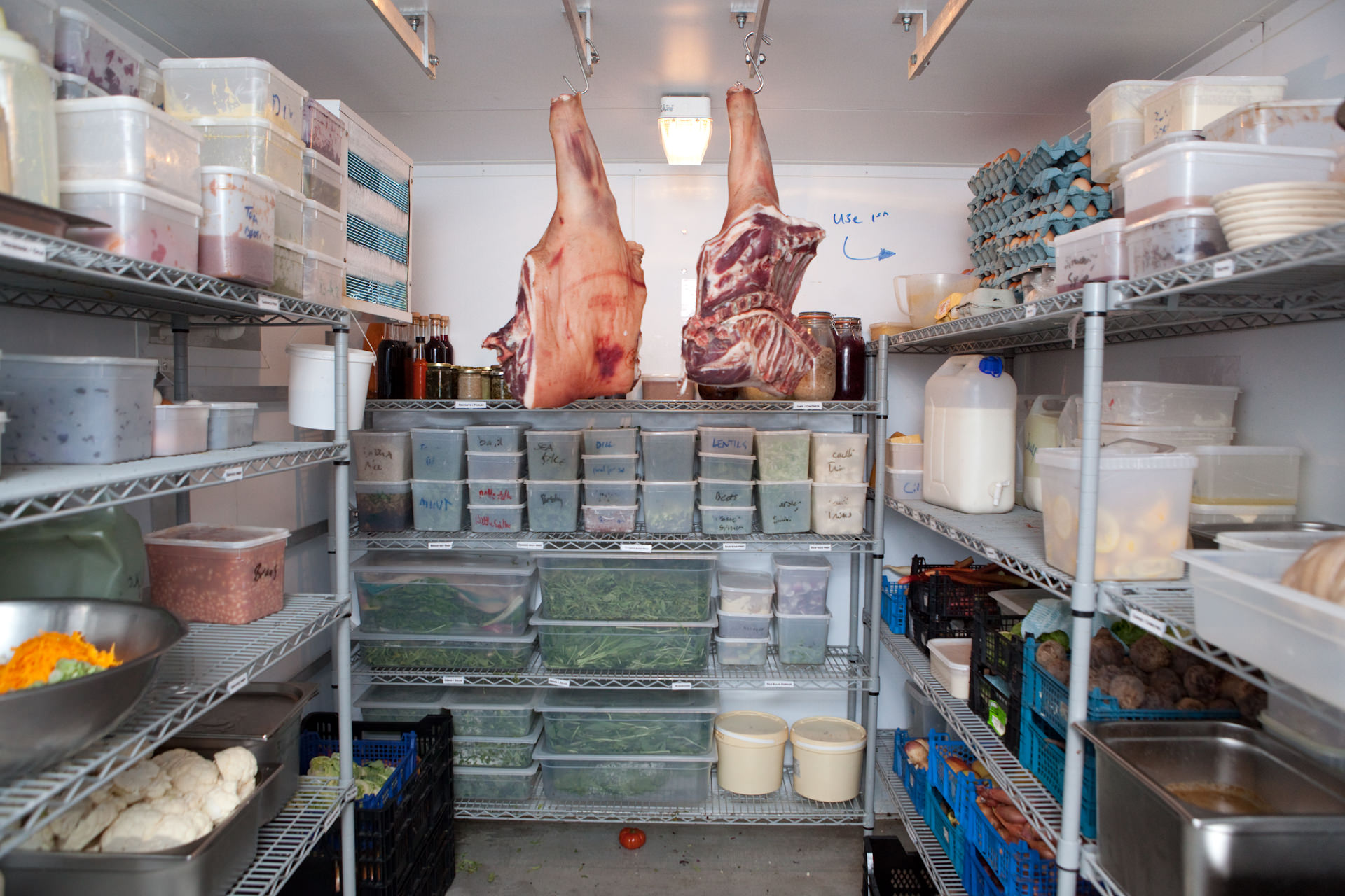 Food in the fridge storage. The pork is from a very small farm / local supplier called Jeremy.