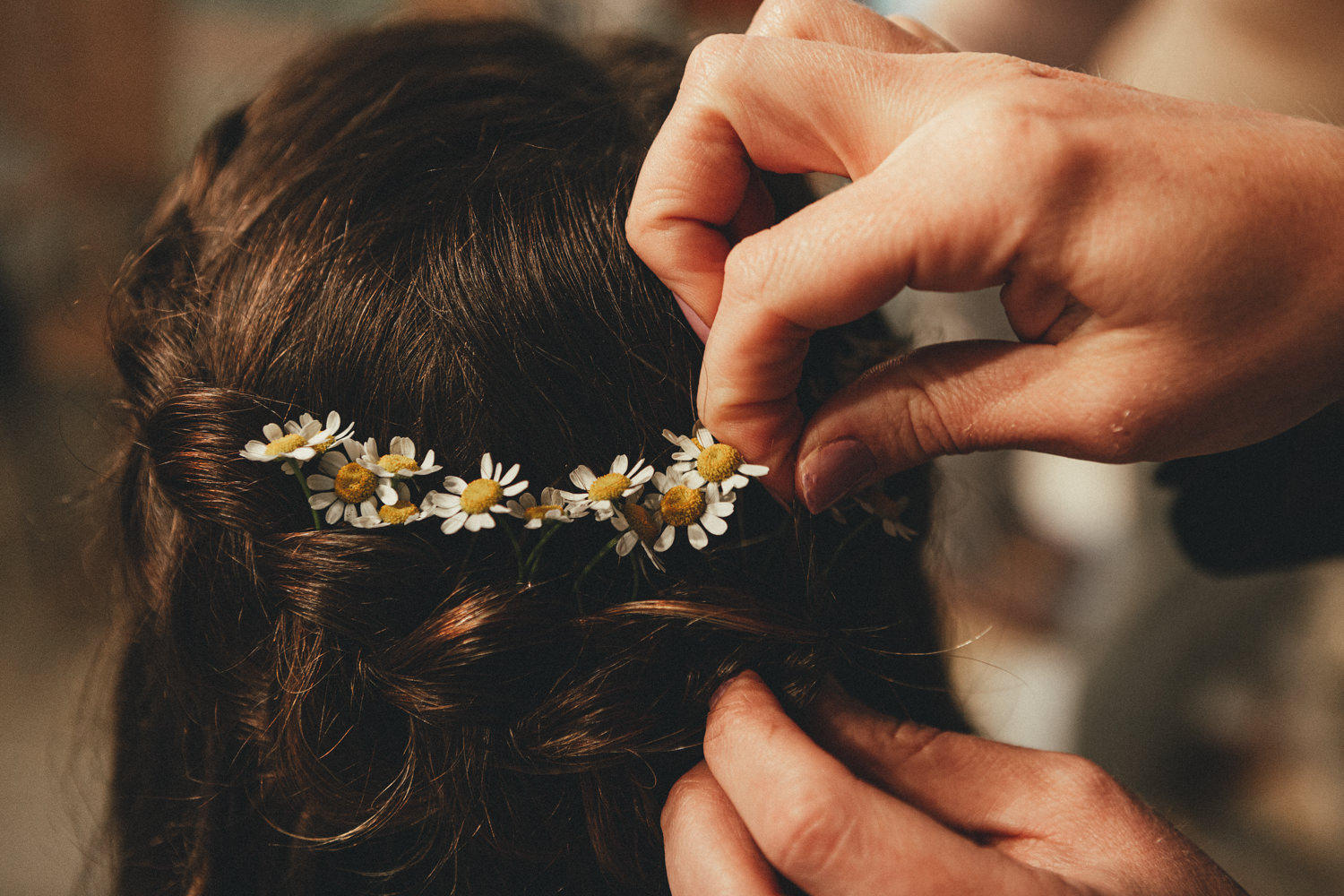 bride getting ready. daisies in hair. bridal hair. daisies. Cornish Tipi Wedding Photographer. Wedding Photography at Cornish Tipi Weddings on the coast of North Cornwall. Cornish Tipi Wedding is set in a wooded valley, surrounded by ancient woodlands