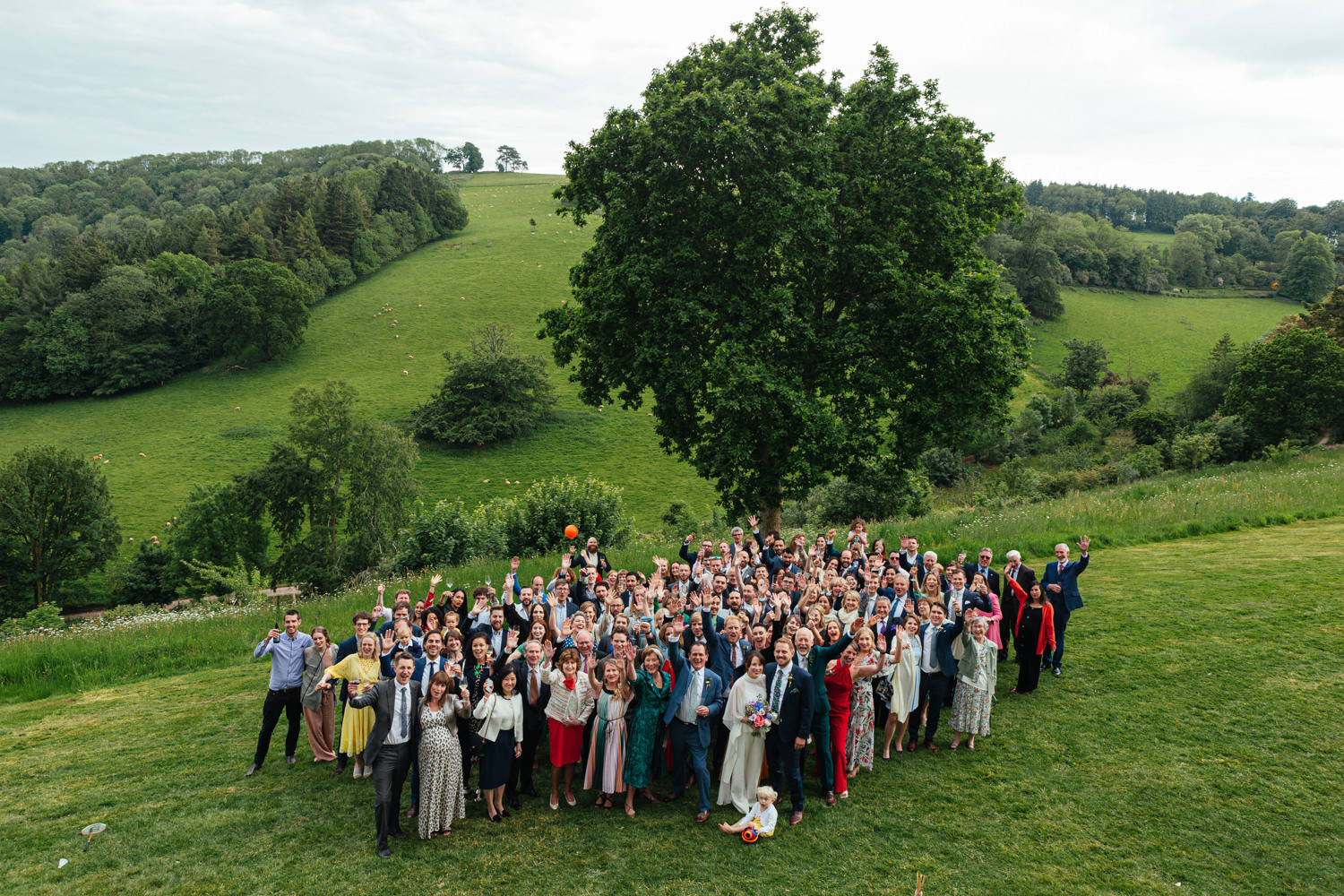 wedding guests, wedding photography, group portrait, rolling hills, devon wedding, sharpham wedding