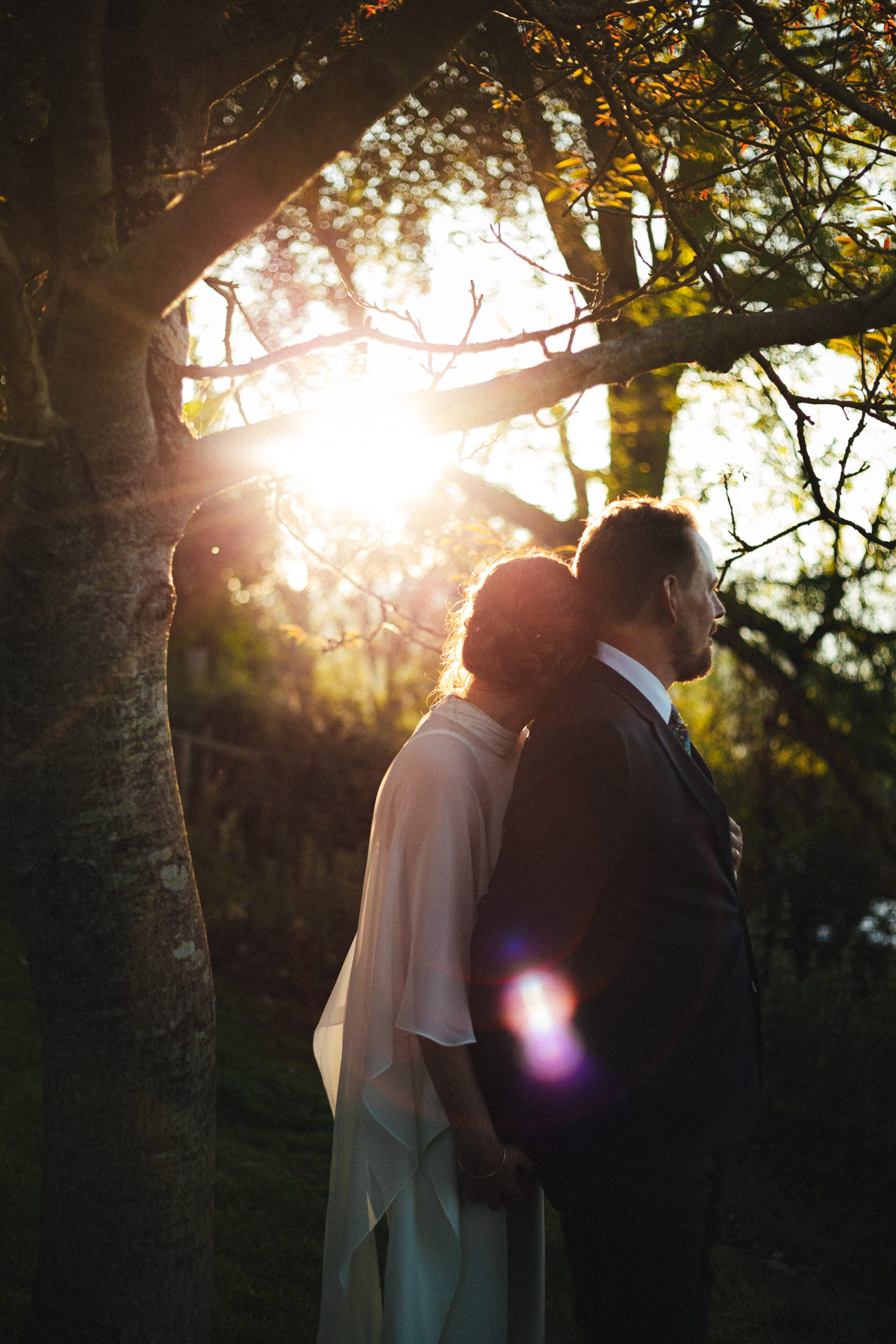 sharpham house wedding, golden hour, trees, couple, sunset, sharpham gardens, sharpham vineyard, devon wedding, devon wedding photography
