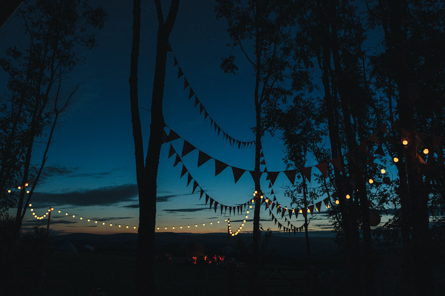night shot, bunting, bunting and lights, Holsome Park Wedding Photography